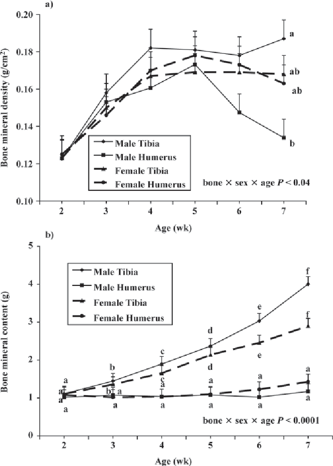 Figure 2. The effect of age on (a) bone mineral density and (b) bone mineral content of the tibia and humerus of a commercial strain of male and female broilers (experiment 1). Each value represents the least squares mean of 6 observations per bone and sex. Means (a) within an age and (b) within bone and sex with no common letter differ significantly (P < 0.05). Values were adjusted for BW.