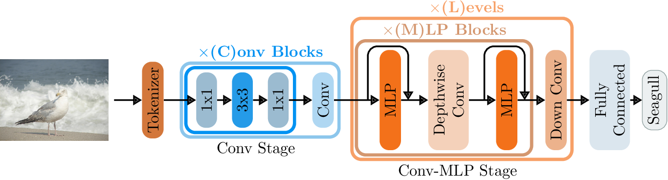 Figure 3 for ConvMLP: Hierarchical Convolutional MLPs for Vision