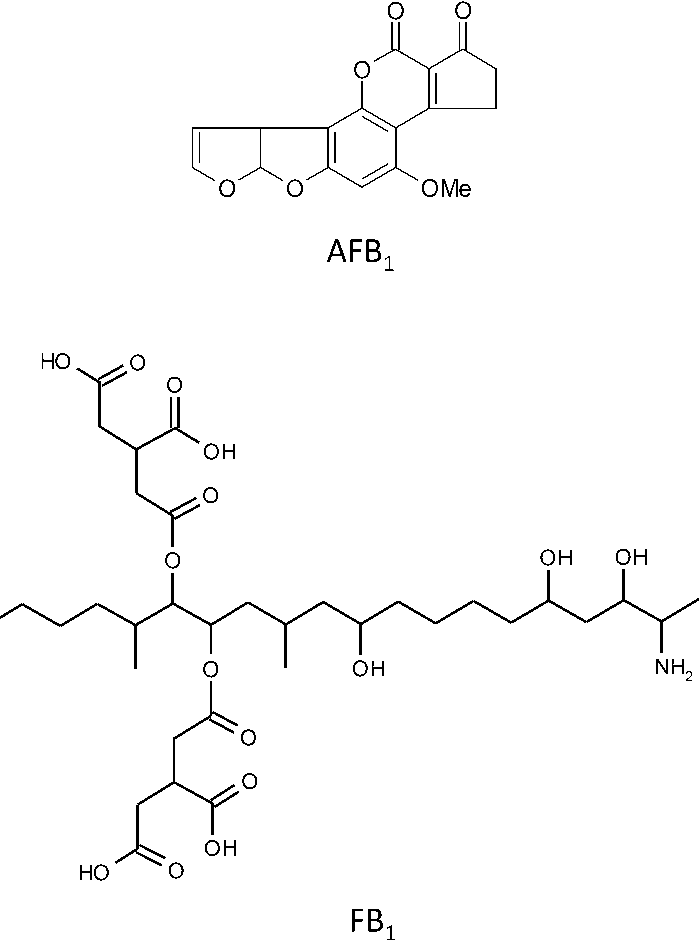 Effects Of Aflatoxin B Fumonisin B And Their Mixture On The Aryl