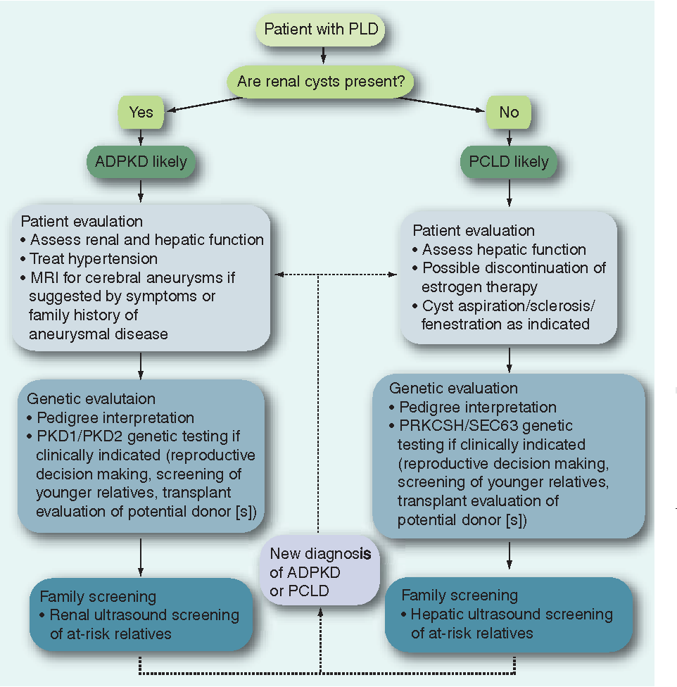 Figure 4 From Advances In Management Of Polycystic Liver Disease