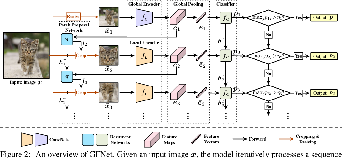 Figure 3 for Glance and Focus: a Dynamic Approach to Reducing Spatial Redundancy in Image Classification