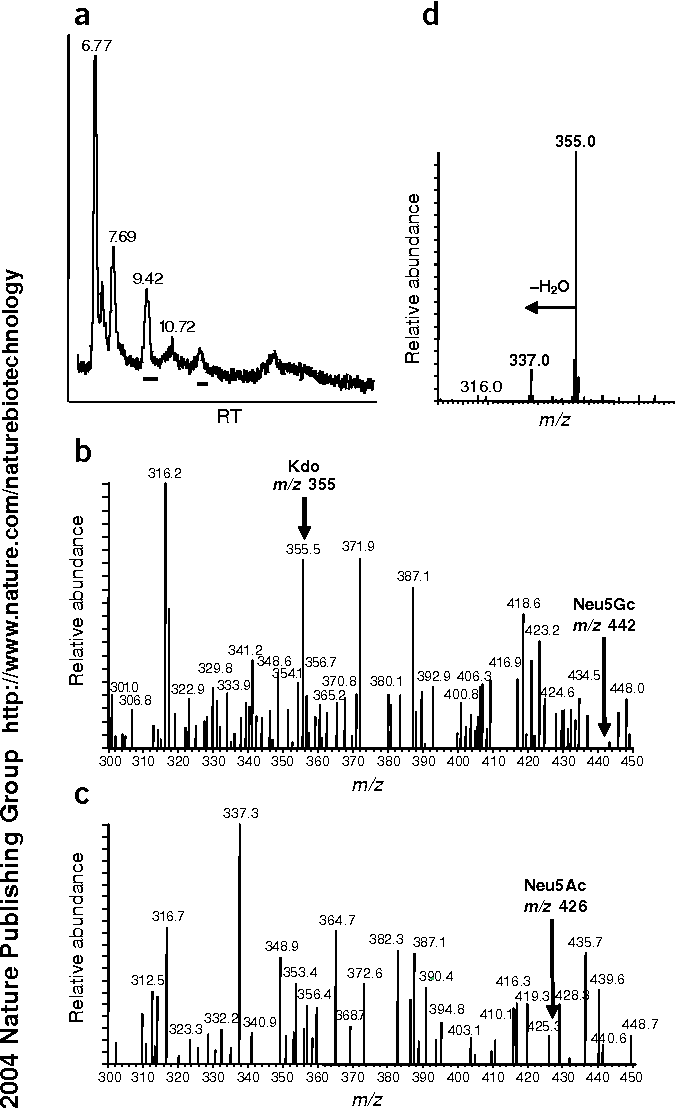 Figure 2 from Reply to 'Glycoprotein sialylation in plants