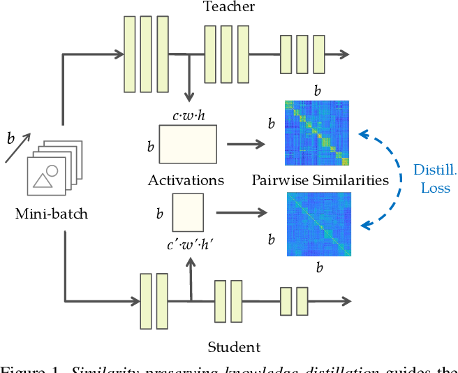 Figure 1 for Similarity-Preserving Knowledge Distillation