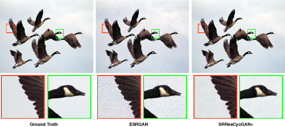 Figure 1 for Deep Cyclic Generative Adversarial Residual Convolutional Networks for Real Image Super-Resolution