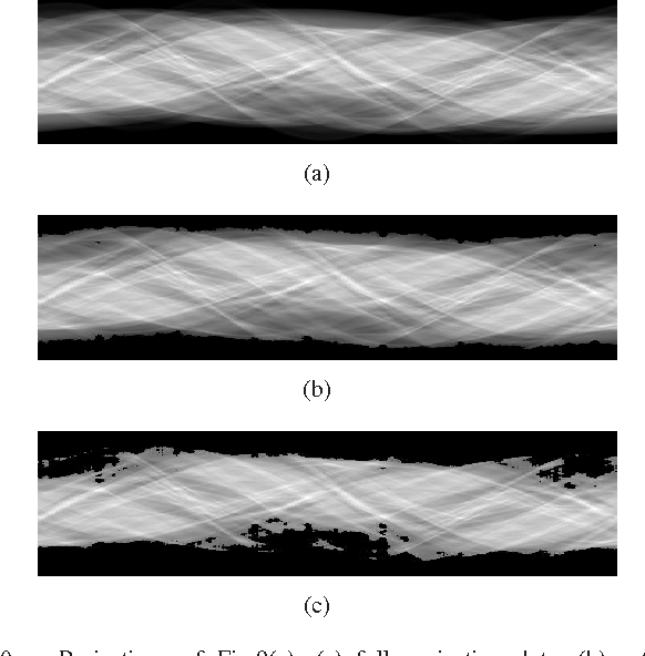 Figure 2 for Mixed one-bit compressive sensing with applications to overexposure correction for CT reconstruction
