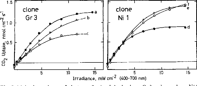 Figure 3 From Sun And Shade Ecotypes Of Solanum Dulcamara L
