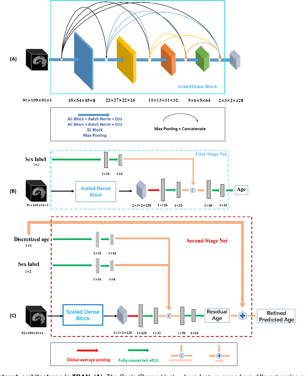 Figure 2 for Brain Age Estimation From MRI Using Cascade Networks with Ranking Loss