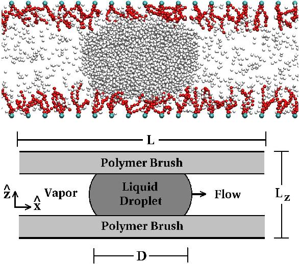 PDF] Droplet Transport in a Nanochannel Coated by