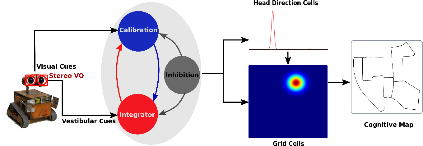 Figure 1 for StereoNeuroBayesSLAM: A Neurobiologically Inspired Stereo Visual SLAM System Based on Direct Sparse Method