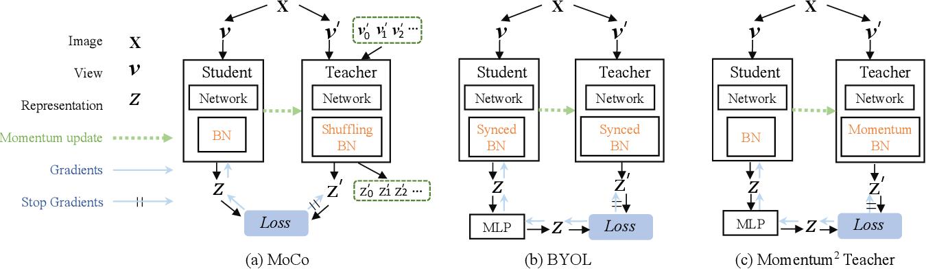 Figure 1 for Momentum^2 Teacher: Momentum Teacher with Momentum Statistics for Self-Supervised Learning