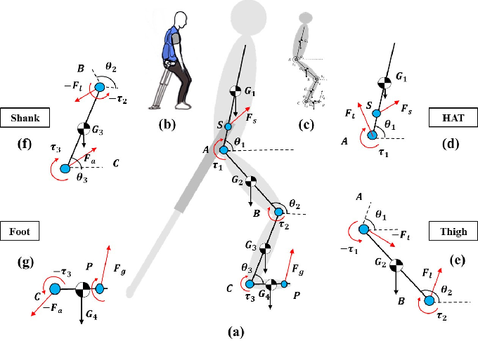 Figure 2 for Robotic Cane as a Soft SuperLimb for Elderly Sit-to-Stand Assistance