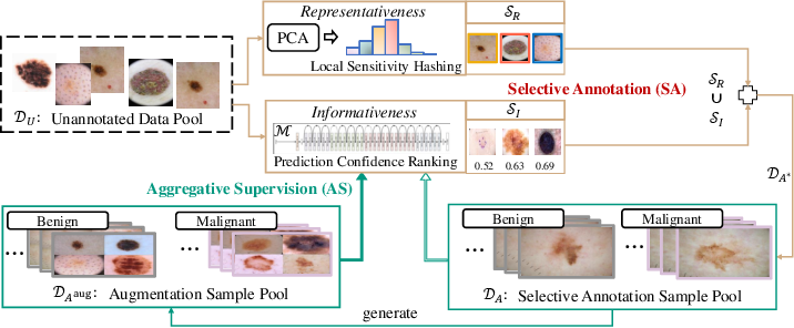 Figure 1 for An Active Learning Approach for Reducing Annotation Cost in Skin Lesion Analysis
