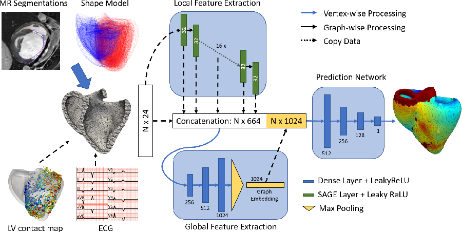 Figure 1 for Graph convolutional regression of cardiac depolarization from sparse endocardial maps