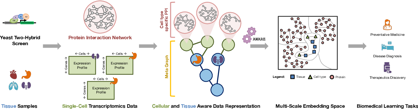 Figure 1 for Deep Contextual Learners for Protein Networks