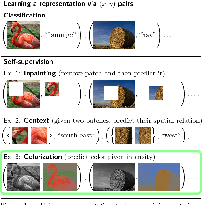Figure 1 for Colorization as a Proxy Task for Visual Understanding
