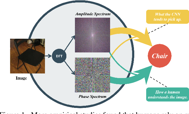 Figure 1 for Amplitude-Phase Recombination: Rethinking Robustness of Convolutional Neural Networks in Frequency Domain