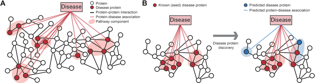 Figure 1 for Large-scale analysis of disease pathways in the human interactome