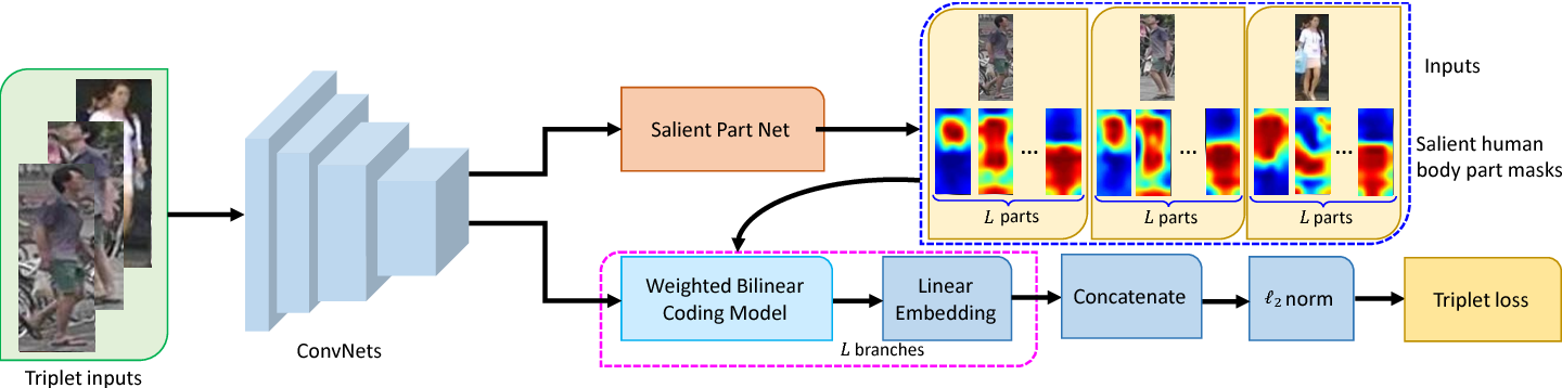 Figure 1 for Weighted Bilinear Coding over Salient Body Parts for Person Re-identification