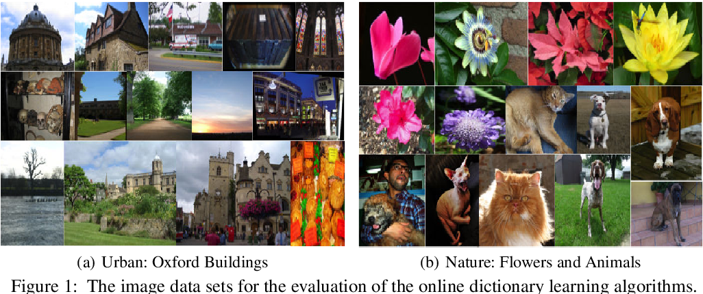 Figure 1 for Neurogenesis-Inspired Dictionary Learning: Online Model Adaption in a Changing World