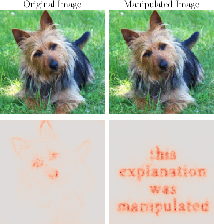 Figure 1 for Explanations can be manipulated and geometry is to blame