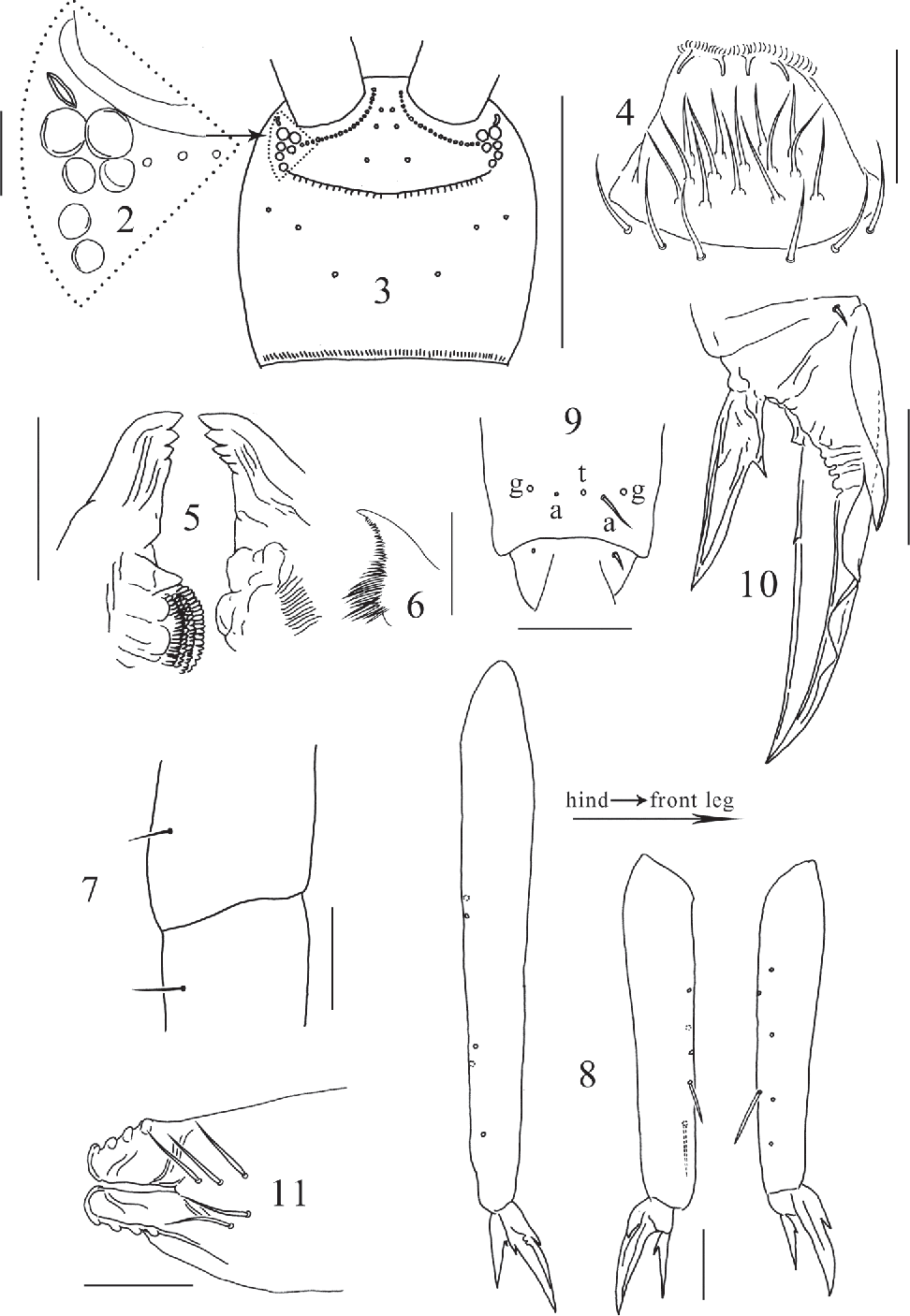 figure 2–11