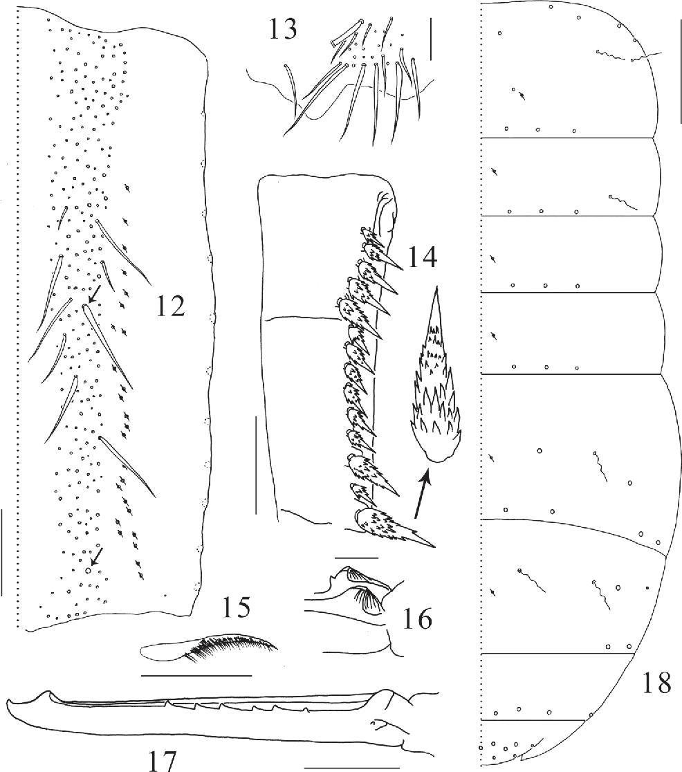 figure 12–18
