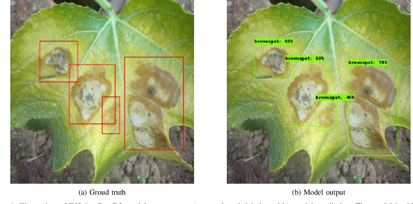 Figure 1 for A Deep Learning-based Detector for Brown Spot Disease in Passion Fruit Plant Leaves
