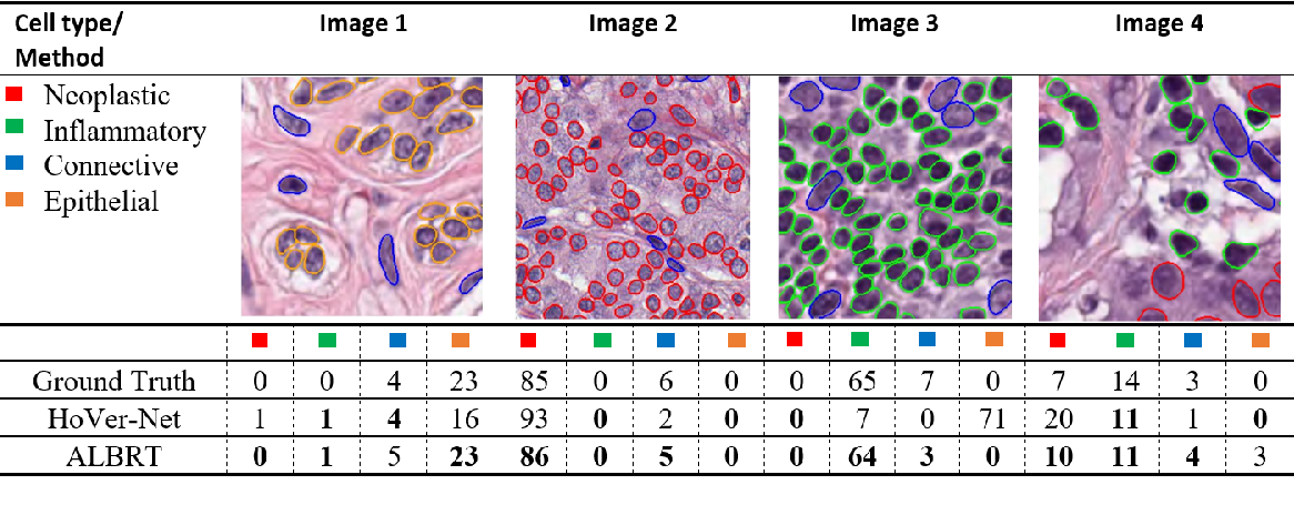 Figure 3 for ALBRT: Cellular Composition Prediction in Routine Histology Images