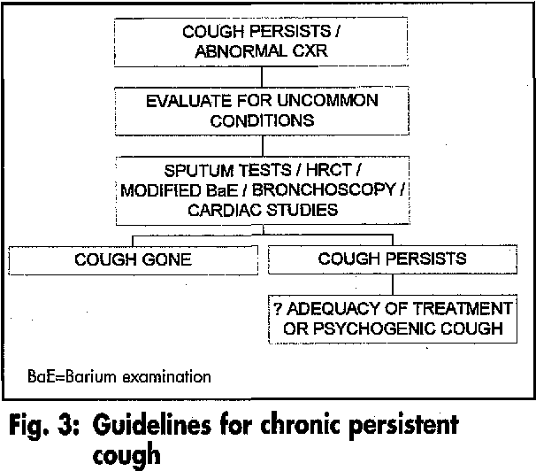 PDF] Assessment and management of chronic cough  - Semantic