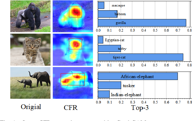 Figure 1 for Towards Imperceptible Adversarial Image Patches Based on Network Explanations