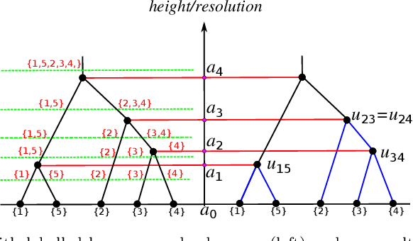 Figure 1 for Maximum Likelihood Estimation for Single Linkage Hierarchical Clustering