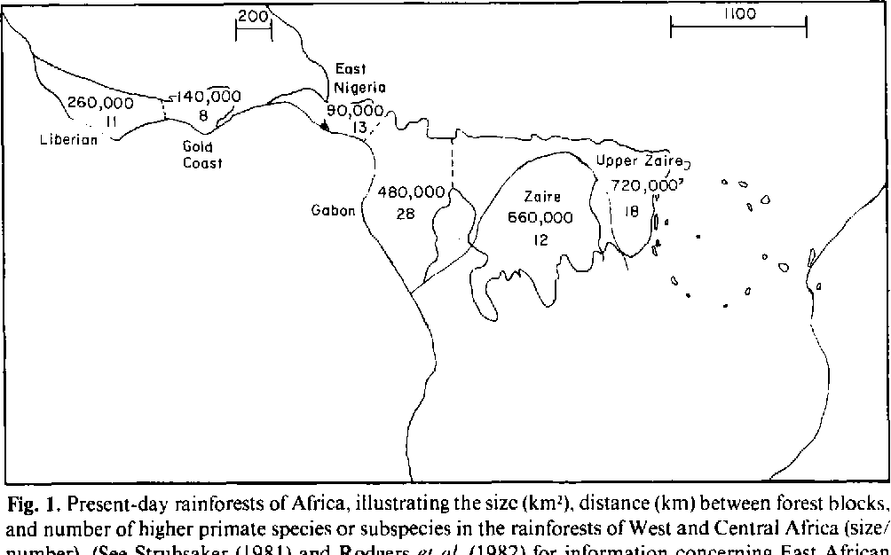 Rainforests In Africa Map.Speciation Of Tropical Rainforest Primates Of Africa Insular