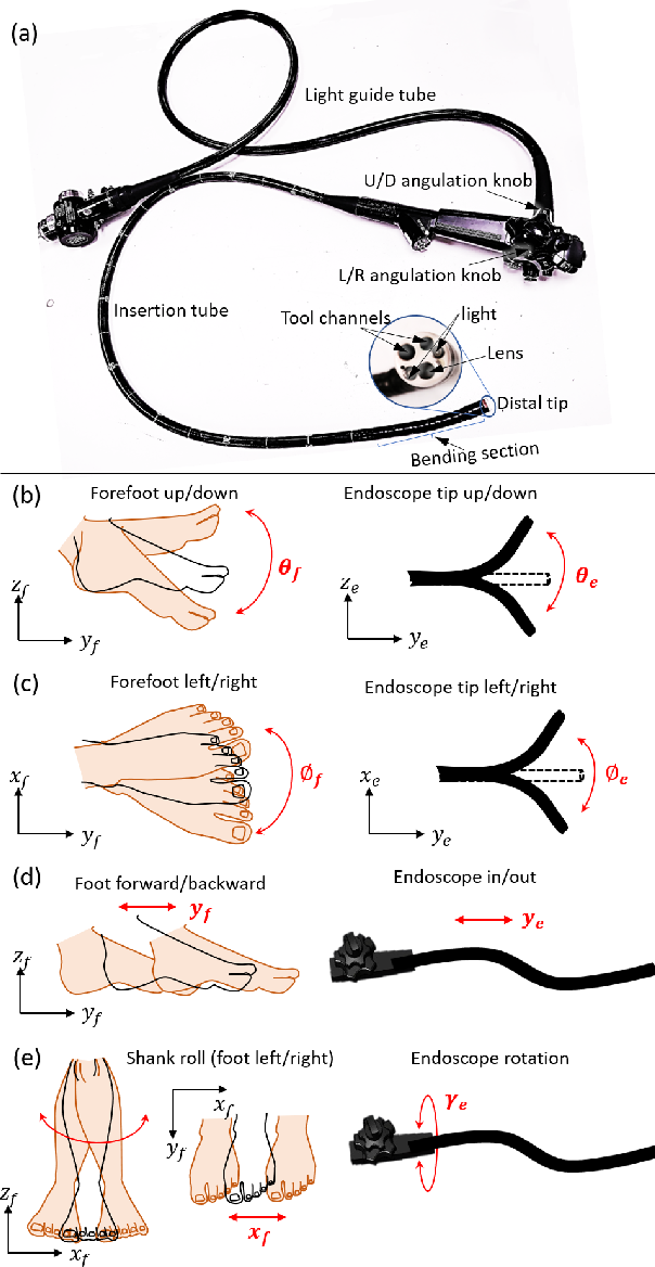 Figure 2 for A Three-limb Teleoperated Robotic System with Foot Control for Flexible Endoscopic Surgery