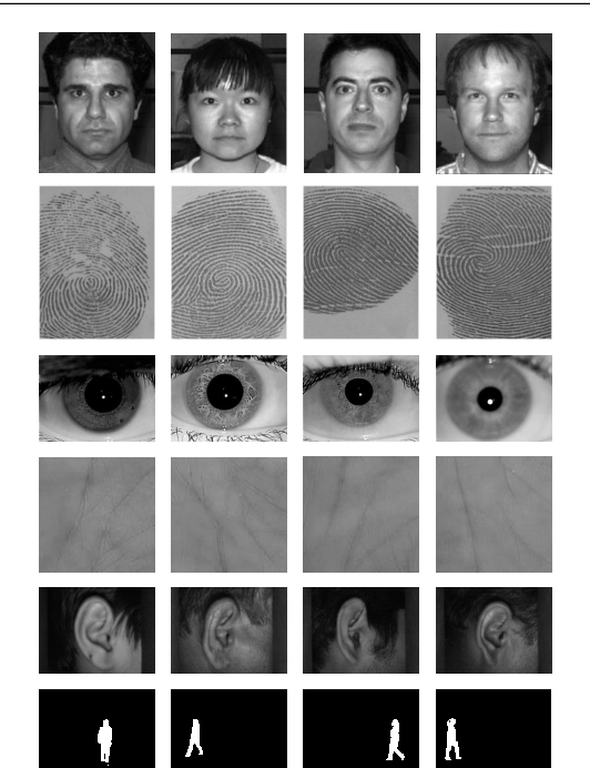 Figure 1 for Biometric Recognition Using Deep Learning: A Survey