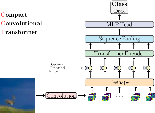 Figure 1 for Escaping the Big Data Paradigm with Compact Transformers