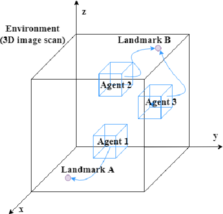 Figure 1 for Communicative Reinforcement Learning Agents for Landmark Detection in Brain Images