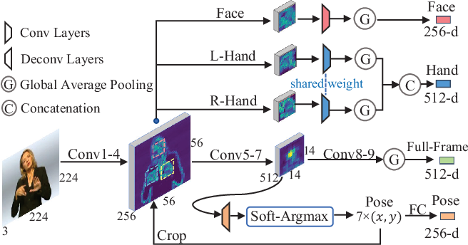 Figure 2 for Spatial-Temporal Multi-Cue Network for Continuous Sign Language Recognition