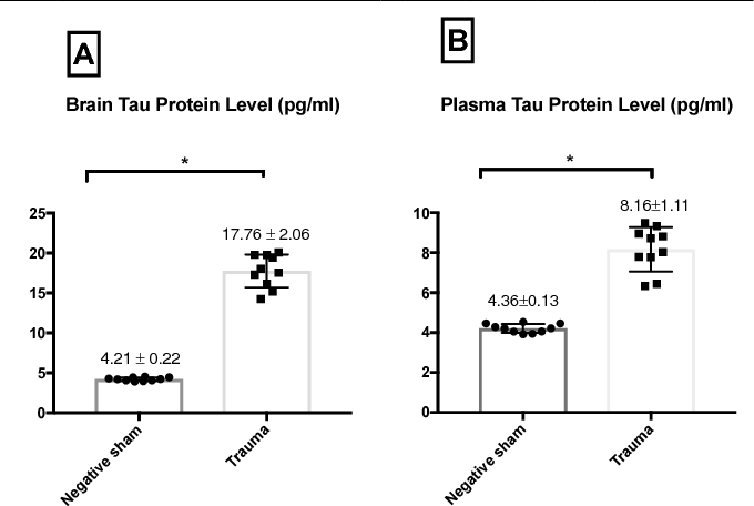 Turmeric Extract Supplementation Reduces Tau Protein Level in