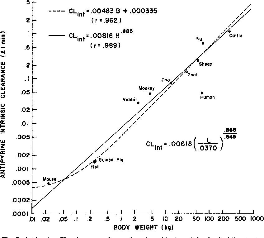 Interspecies Variation In Liver Weight Hepatic Blood Flow And