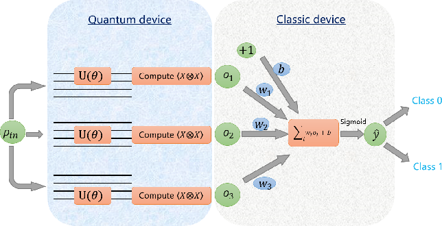 Figure 1 for VSQL: Variational Shadow Quantum Learning for Classification