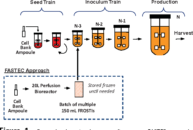 conventional seed train process flow versus fastec approach to initiate  cell culture manufacturing