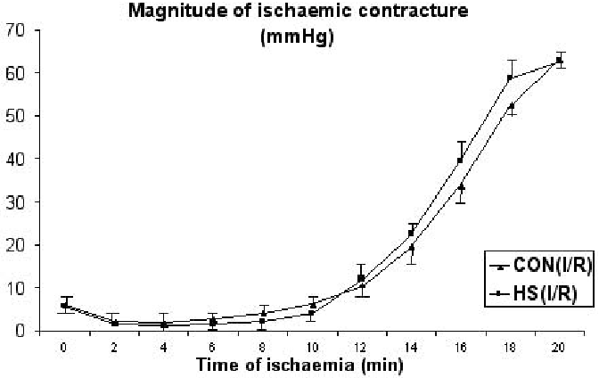 Fig. 1 Ischaemic contracture profiles of untreated hearts (CON) and hearts from preheated rats (HS) subjected to 20 min of ischaemia