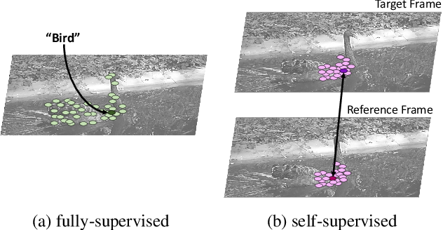 Figure 3 for RPM-Net: Robust Pixel-Level Matching Networks for Self-Supervised Video Object Segmentation