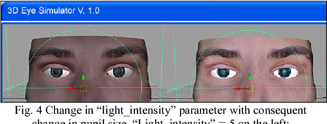 """Fig. 4 Change in """"light_intensity"""" parameter with consequent change in pupil size. """"Light_intensity"""" =-5 on the left; """"Light_intensity"""" = +5 on the right"""