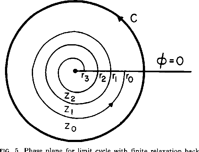 Figure 5 From Discontinuities In Phase Resetting Experiments