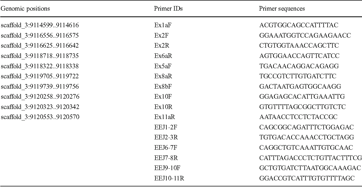 Table 2 Primers designed to amplify regions from exons 1–11 (Ex) and exon-exon junctions (EEJ) to obtain fragments of the hnRNPQ-like gene and for qPCR
