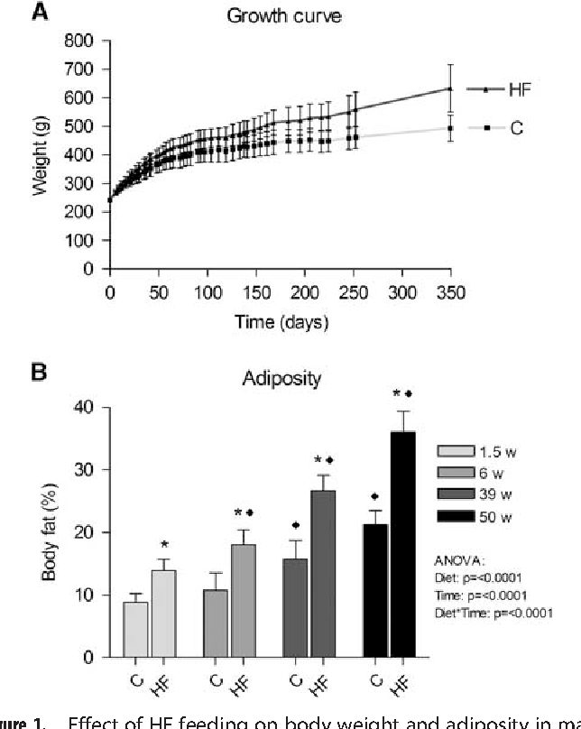 One-year high fat diet affects muscle-but not brain mitochondria