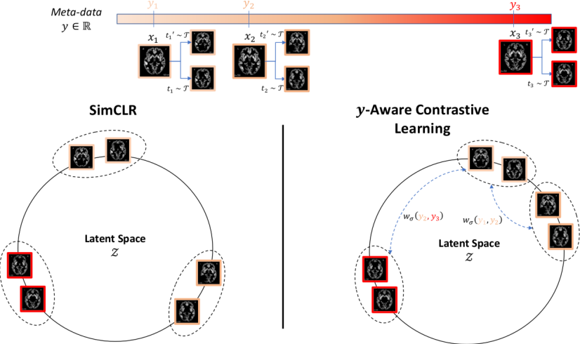 Figure 1 for Contrastive Learning with Continuous Proxy Meta-Data for 3D MRI Classification