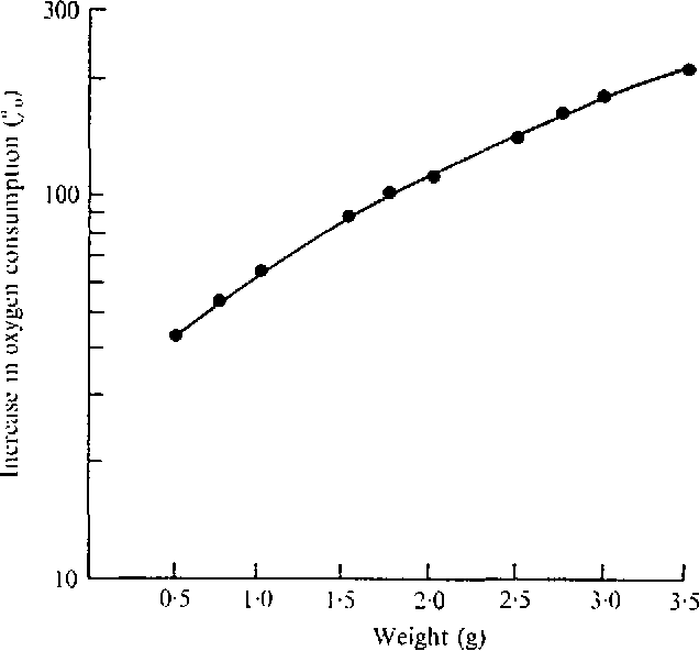 Fig. 6. Curve showing the percentage increase in oxygen consumption in relation to body size in case of worms injected with 'cold' nervous extract. Values obtained from the regression lines in Fig. 5.