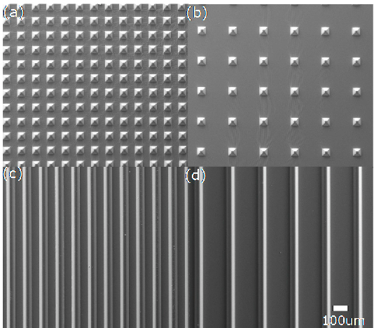 Figure 4. SEM images of four different microstructures on the PDMS layer: (a) type I; (b) type II; (c) type III; and (d) type IV.